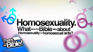 What does the Bible say about homosexuality and homosexual acts?
